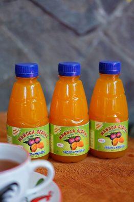 Mangga-Gedong-a
